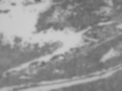 Solaterra-01-part.1.jpg