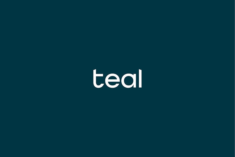 teal-insurance-broker_wortmarke_01.jpg