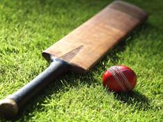 Cricket-b.jpg