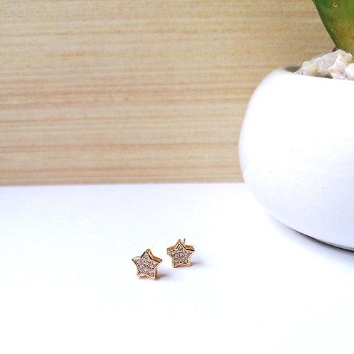 Aretes Estrella de Zirconia