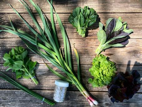 Week #1 Food Prep Guide + RECIPE: Spruce Tip Shortbread