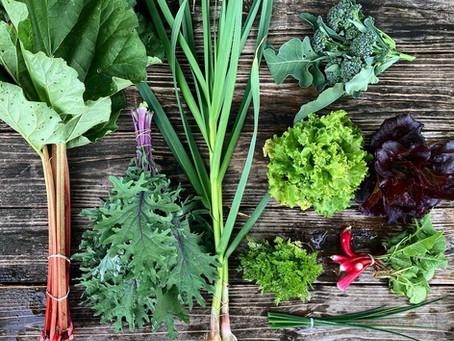 Week #3 Food Prep Guide + RECIPE: Pan-Steamed Broccoli with Lemon Cream and Pepitas