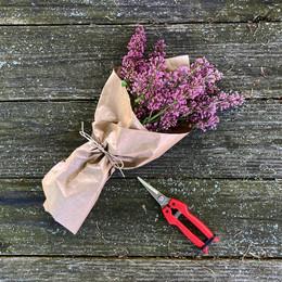 lilac market bouquet