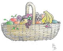 fruitcolour.jpg