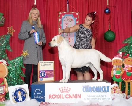 Pub Royal Canin WD & BOW