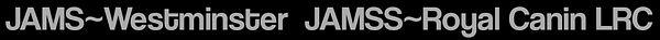 JAMSS2.jpg