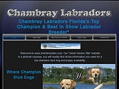 Chambray Labs website