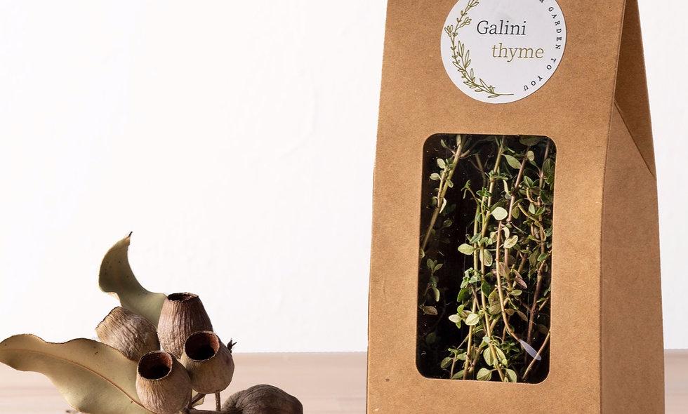 Galini Thyme