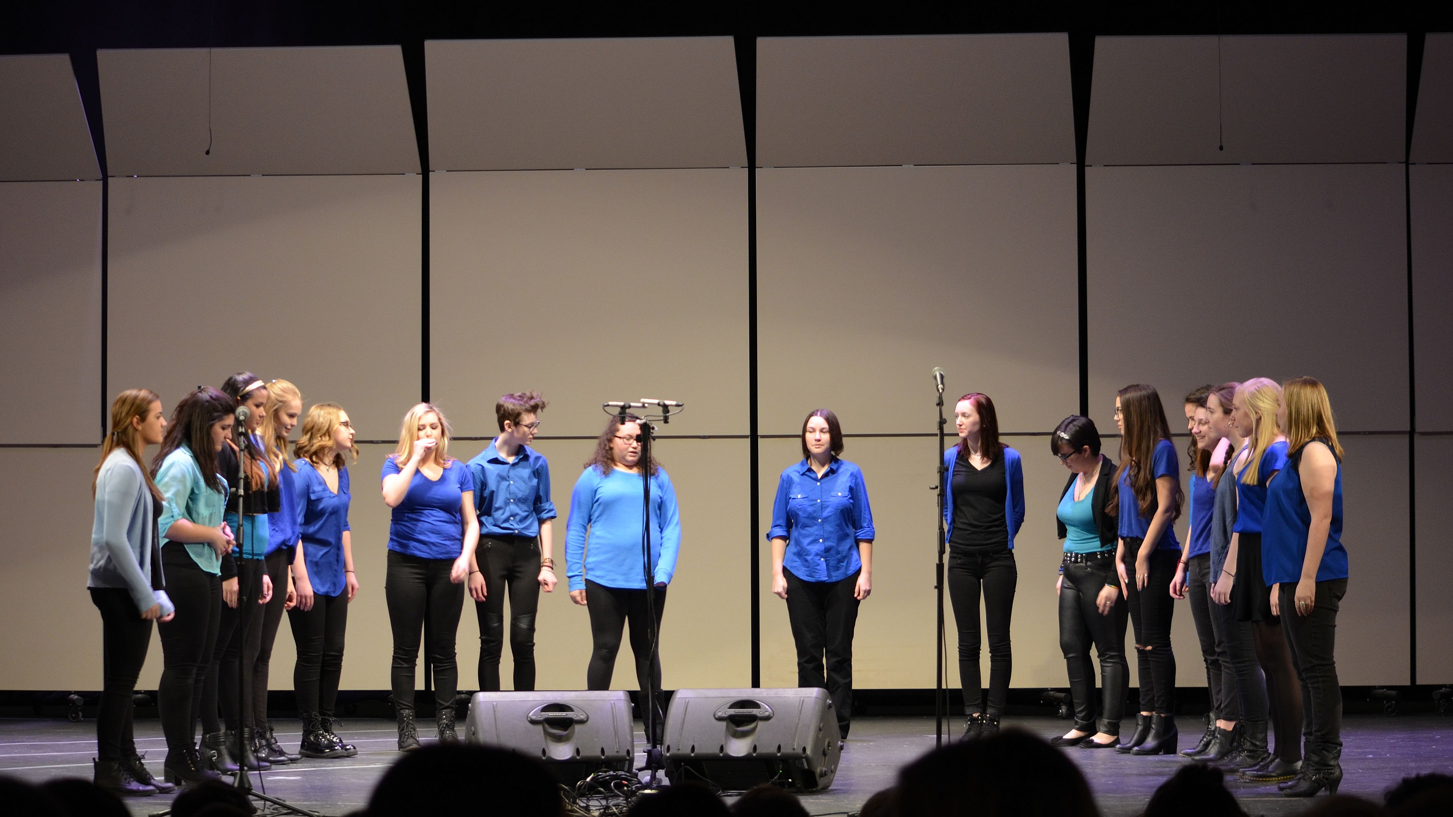Ithacappella Concert 2016