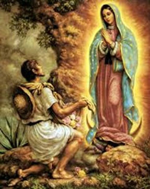 Our lady of gudalupe pic.jpg