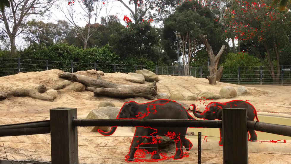 Animal Tracking System