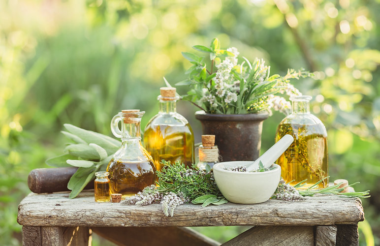 Medicinal plants from the garden and the