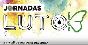 Jornada Luto en colores 2017.jpg