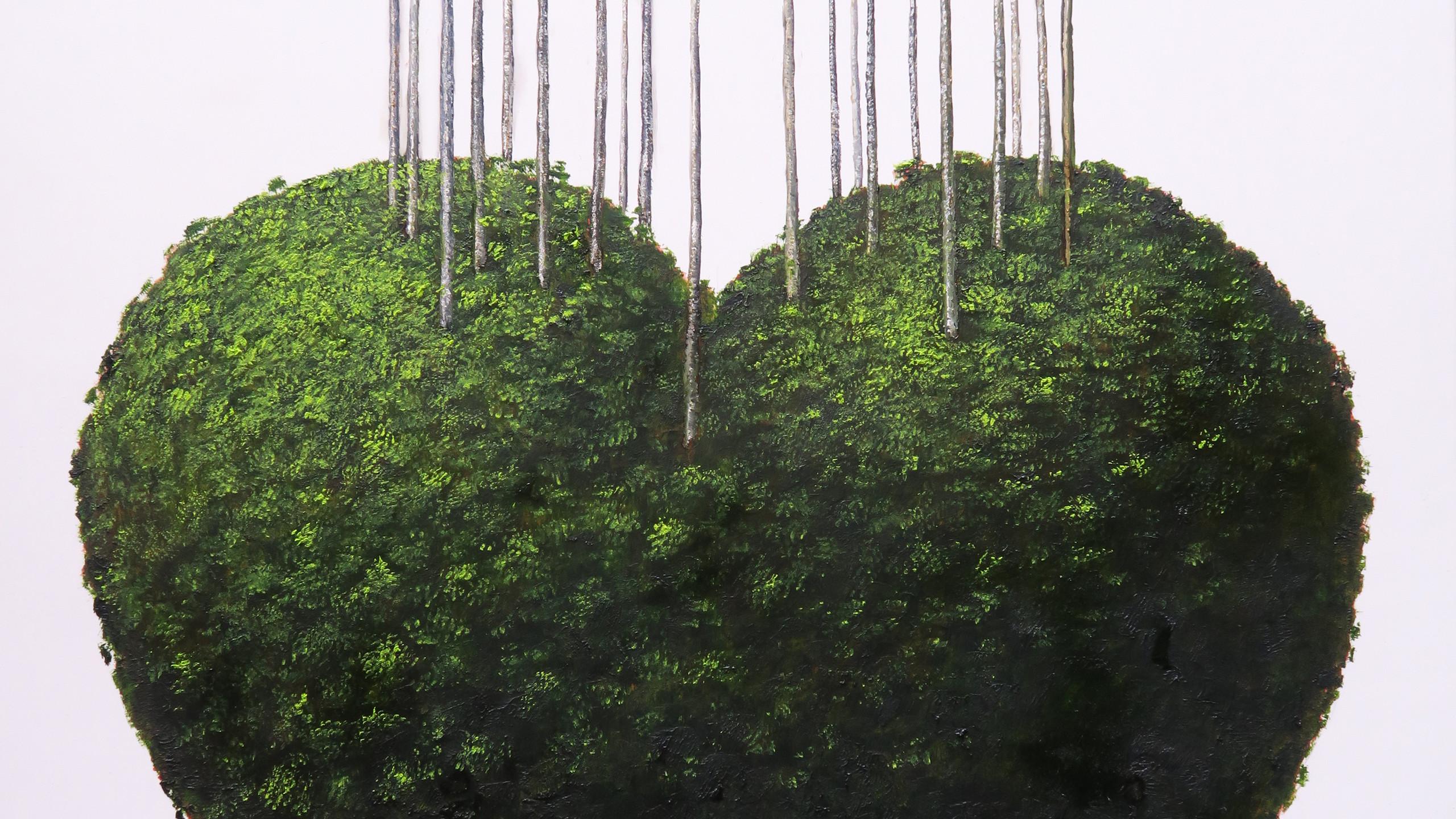 jardin-del-corazon-1556569398