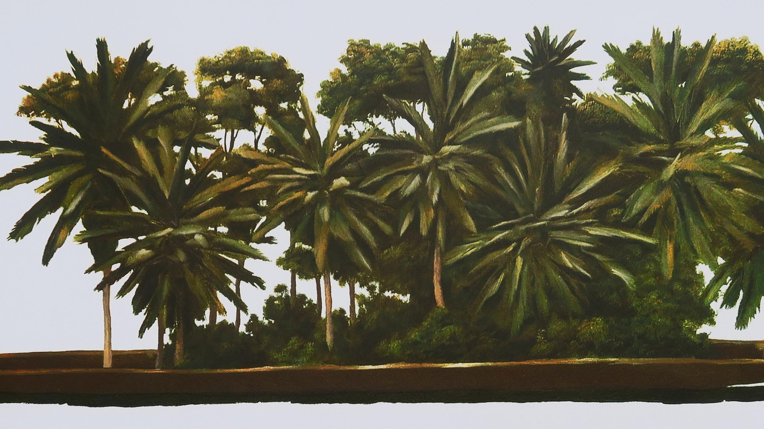 palmeras-1556570094
