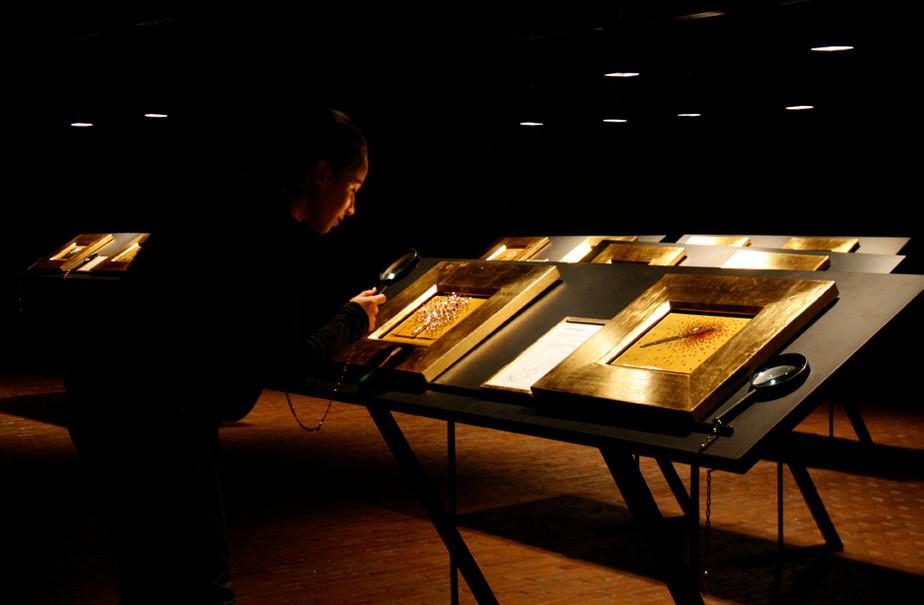 Museo de Arte Moderno de Bogota 2009