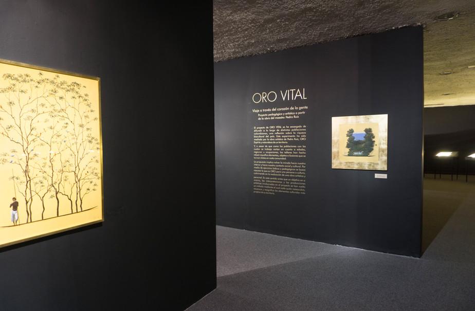 Museo de Arte de Caldas Manizales, Colombia 2016