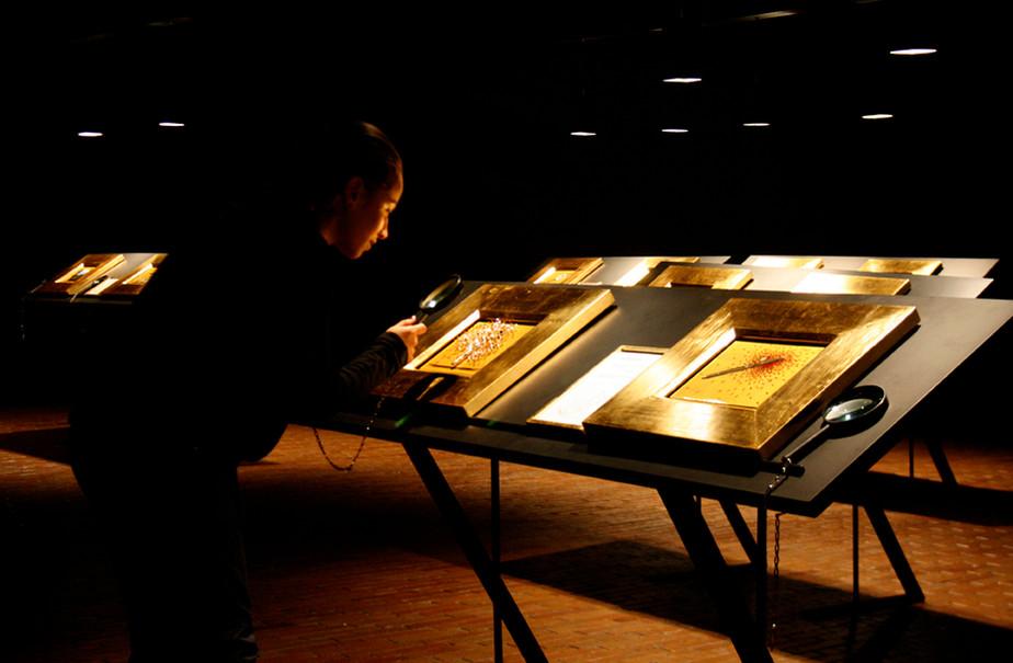 Mambo_BMuseo de Arte Moderno de Bogota 2009