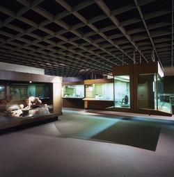 Museo_del_Oro_p_ft_3_06-x.jpg