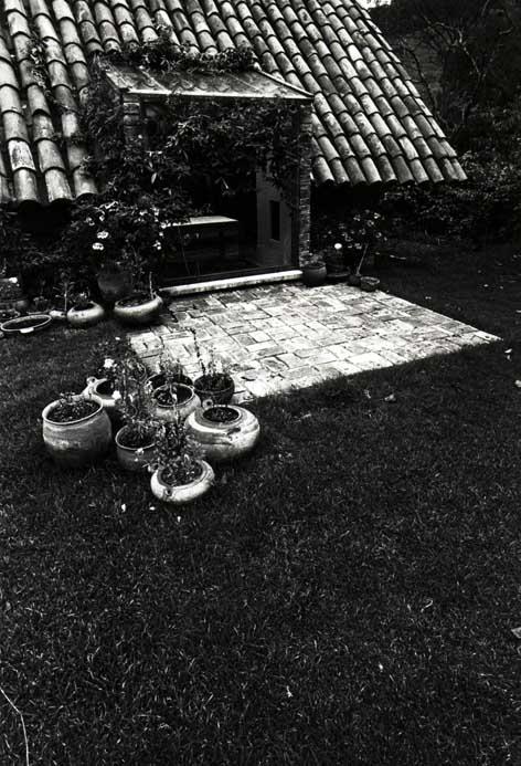 abra_ft_casas_entr2.jpg