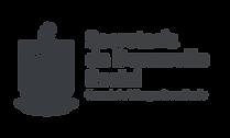 SDS Logo (1).png