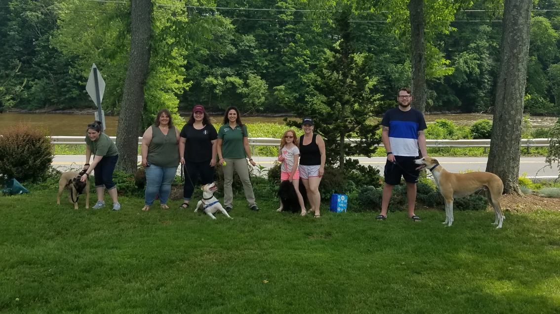 Spring Dog Training 2018_edited