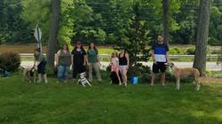 Spring Dog Training 2018_edited