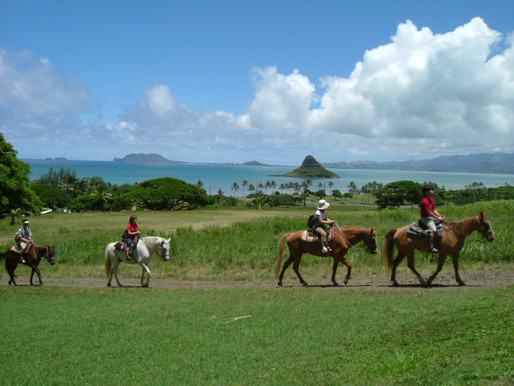 5 Can't-Miss Day Trips When Visiting Oahu