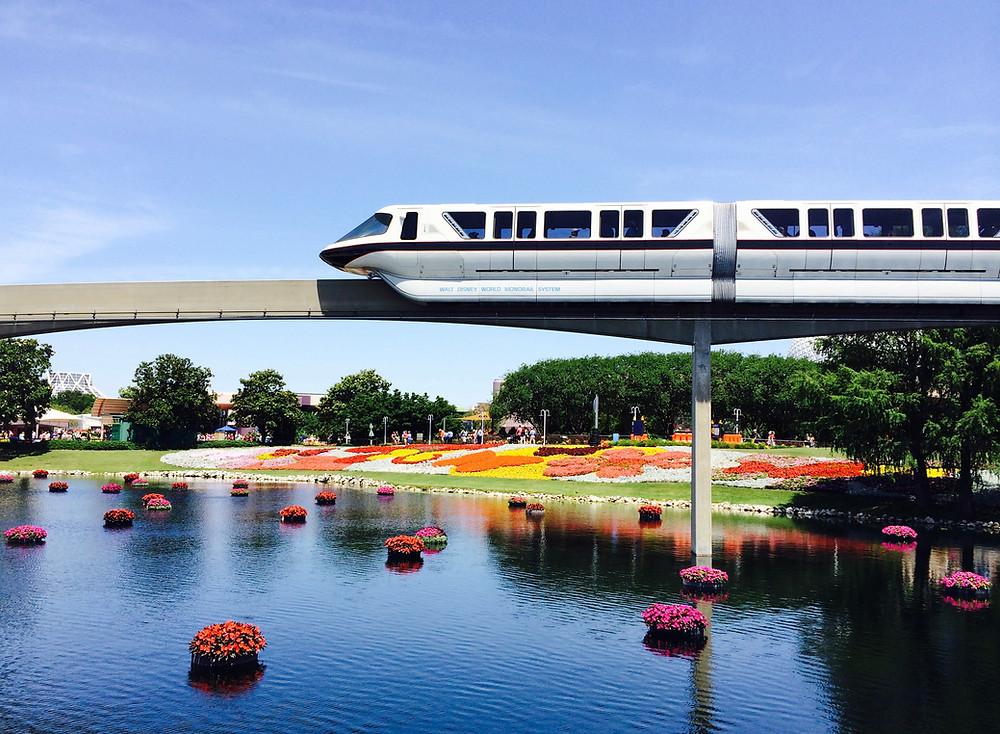 Disney Free Transportation