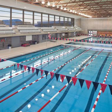 UNLV - McDermott Pool Replacement
