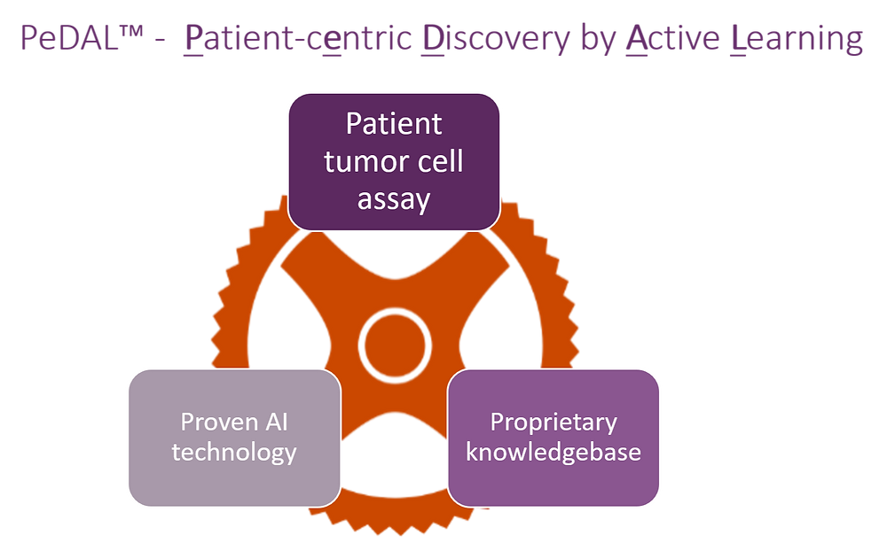 PeDAL - Patient cEntric Discovery by Active Learning