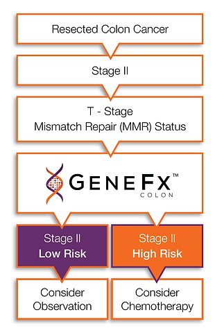 Treatment Plan with GeneFx Colon