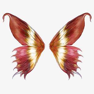 butterfly1.jpeg