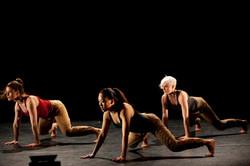 'Tempo' Stratford Circus