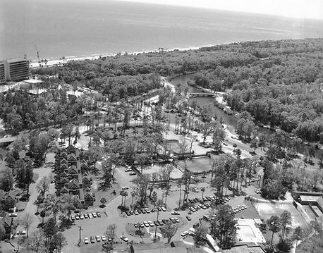 Palmetto Dunes Resort Beach