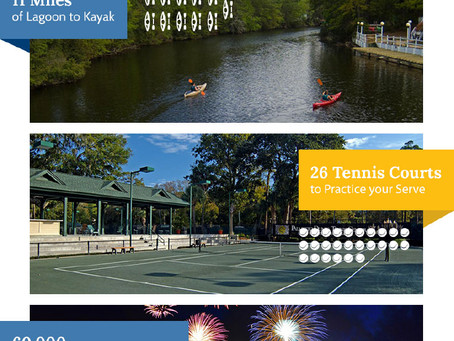 Palmetto Dunes by the Numbers