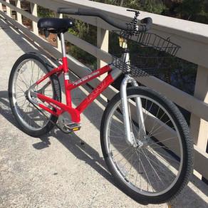 Hidden Bike Trails of Hilton Head Island