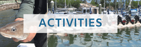 Header Image for Activities at Shelter Cove Hilton Head