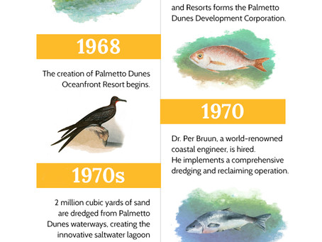 History of the Palmetto Dunes Lagoon