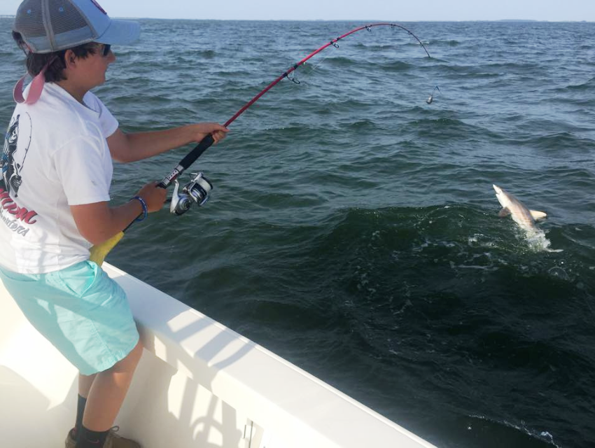 Catching a Shark during Deep Sea Fishing Hilton Head