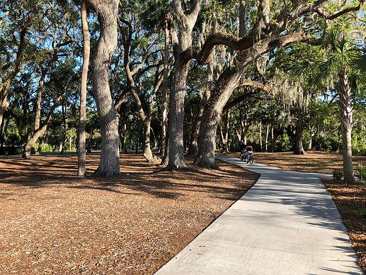 sidewalk trail in woods