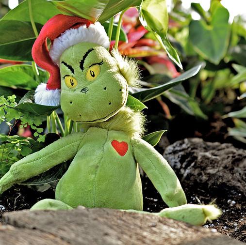 Scrooge è il Grinch? Ecco la storia dell'uomo che odia il Natale.