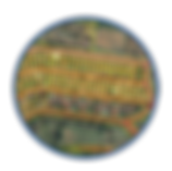 סופרקום ניהול גיאוגרפי