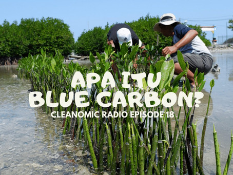Apa itu Blue Carbon?