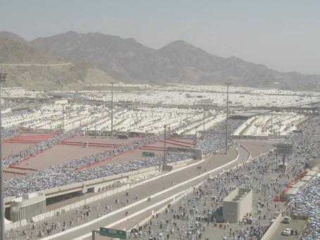 5 Cerita Seputar Islam, Haji, Qurban dan Kelestarian Lingkungan