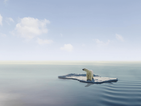 Perubahan Iklim yang sudah menyapa