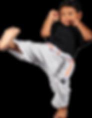 Salvador_kick.png