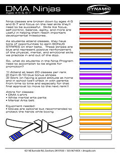Belt Rank info - Ninjas.jpg