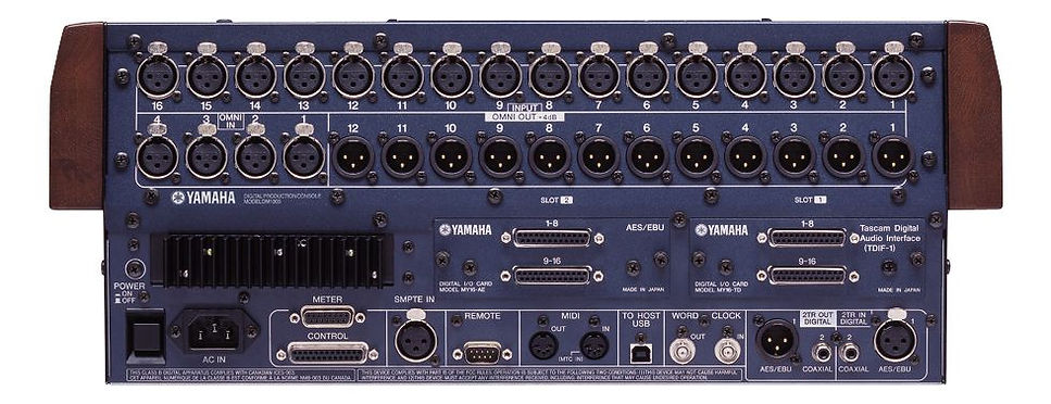 Yamaha DM100 Rear View
