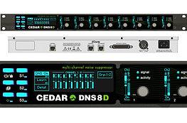 CEDAR DNS8 Dante from Absolute Broadcast
